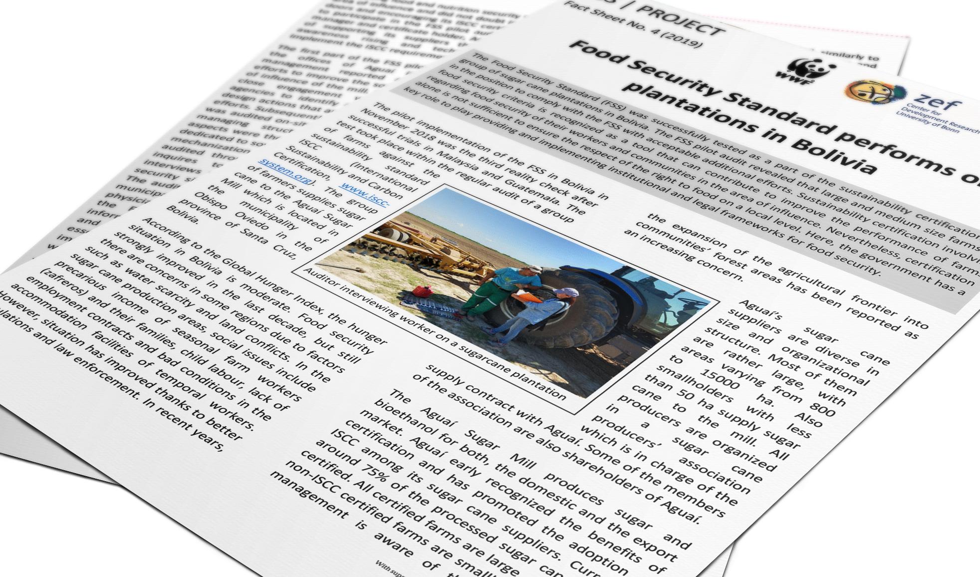 2019-factsheet-fss-in-bolivia-teaserpicture