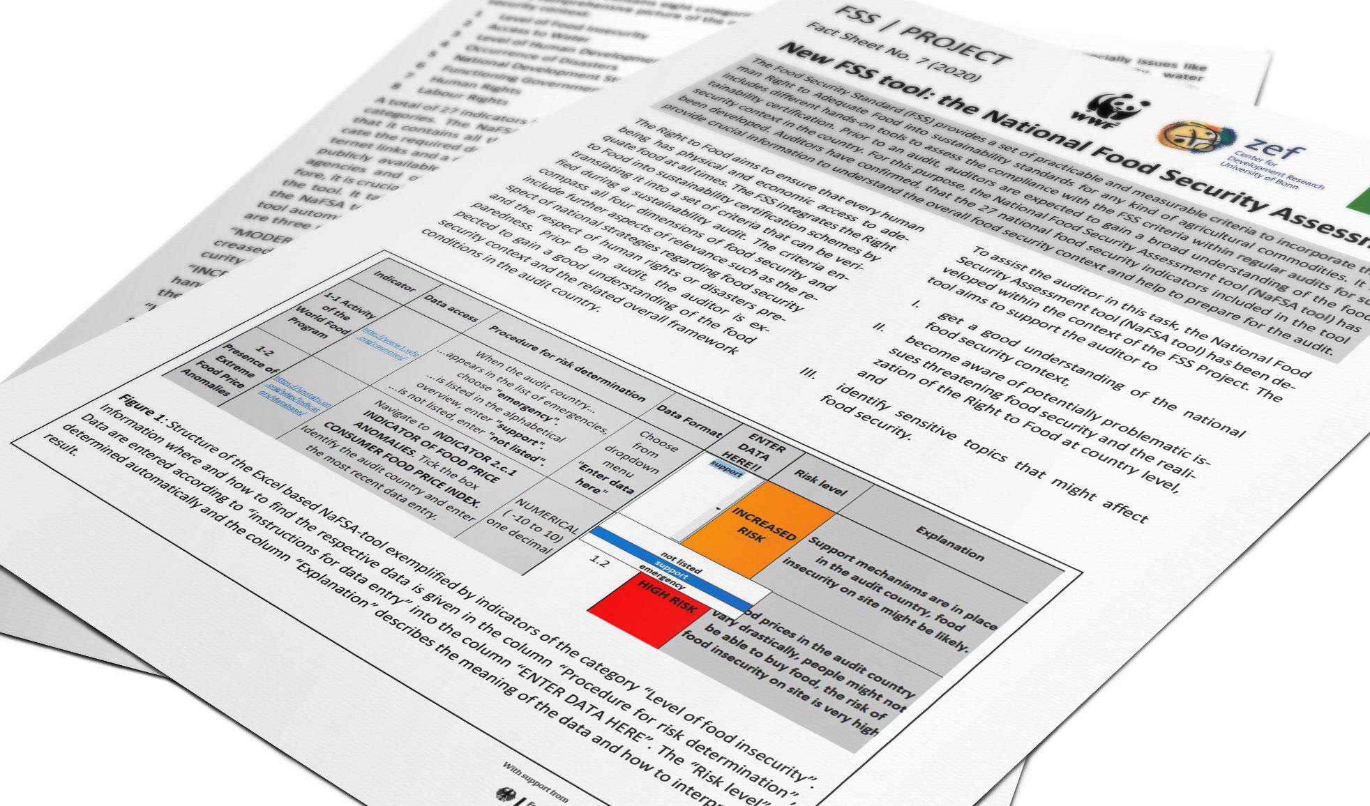 2020-fact-sheet-7-National-Food-Security-Assessment-Tool-teaser